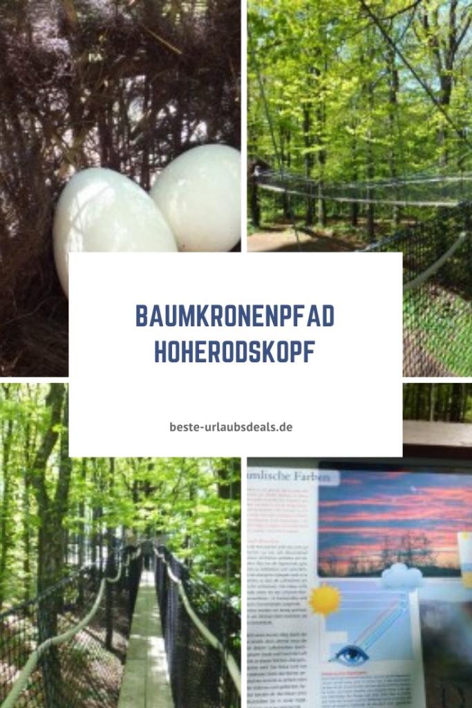 Baumkronenpfad-Hoherodskopf